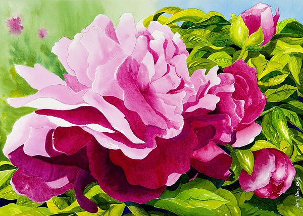 Flower Painting - Peonies In Pink by Janis Grau