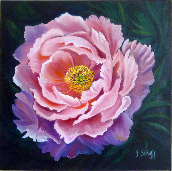 Peony Painting - Peony by Janet Silkoff