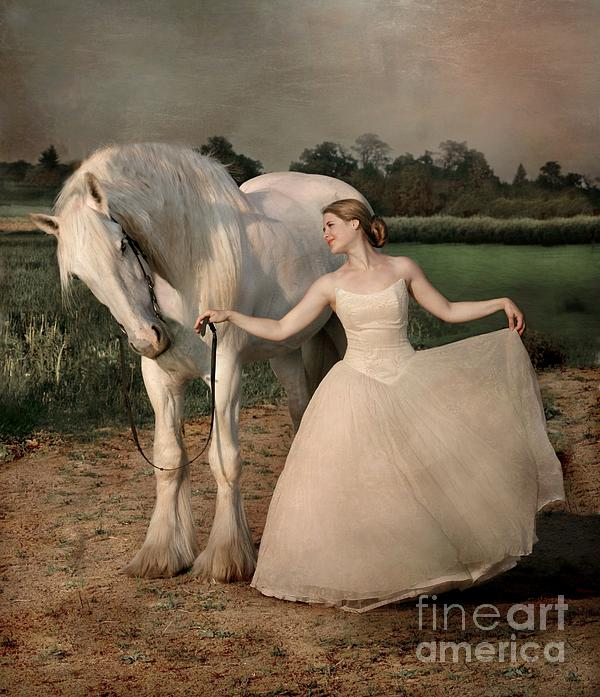 White Horse Photograph - Perfect Dancers by Dorota Kudyba