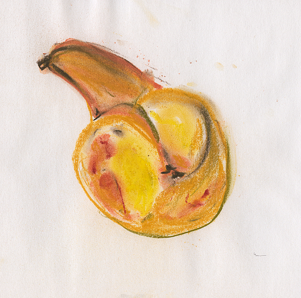 Pear Drawing - Perfect by Linda DiGusta