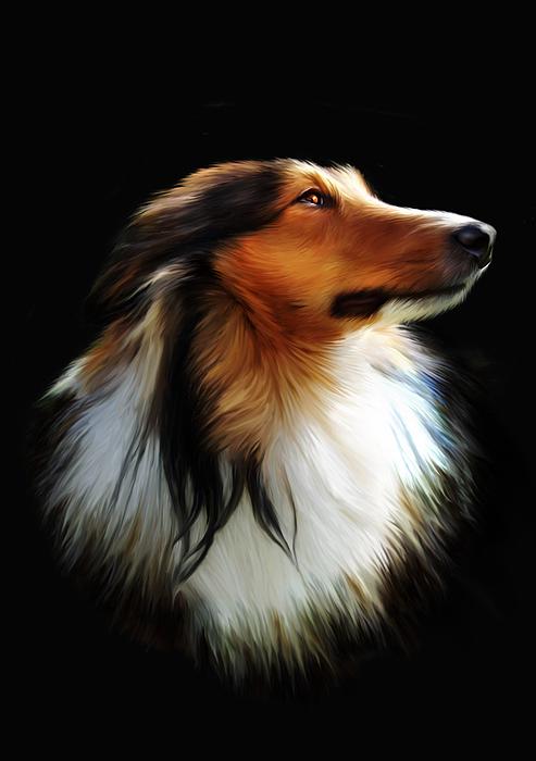 Shetland Digital Art - Persephone by Julie L Hoddinott