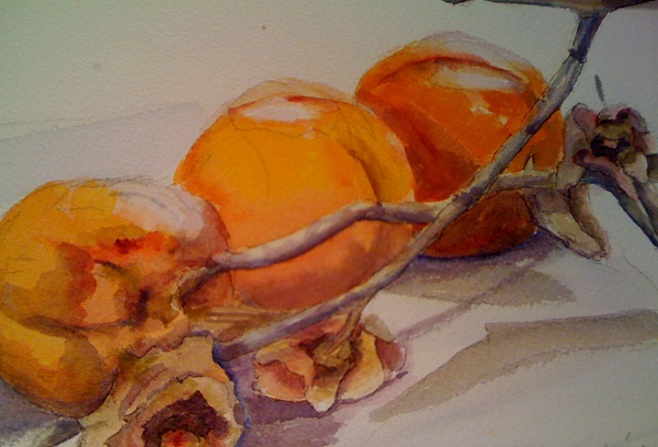 Still Life Painting - Persimmons by KC Winters