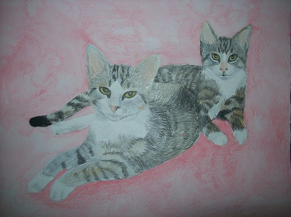 Cat Painting - Pet Portrait Twin Cats Original Watercolor Memorial By Pigatopia by Shannon Ivins