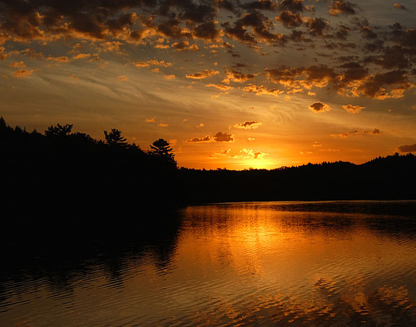 Sunrise Photograph - Petes Lake by David Nicely