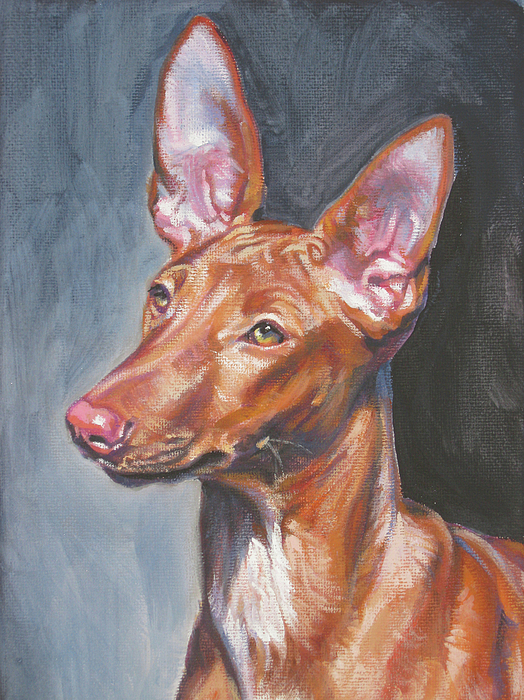 Pharaoh Hound Painting - Pharaoh Hound by Lee Ann Shepard