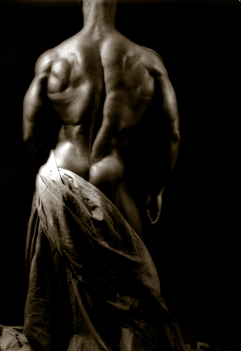 Muscle Photograph - Photo 5 by Marcin and Dawid Witukiewicz