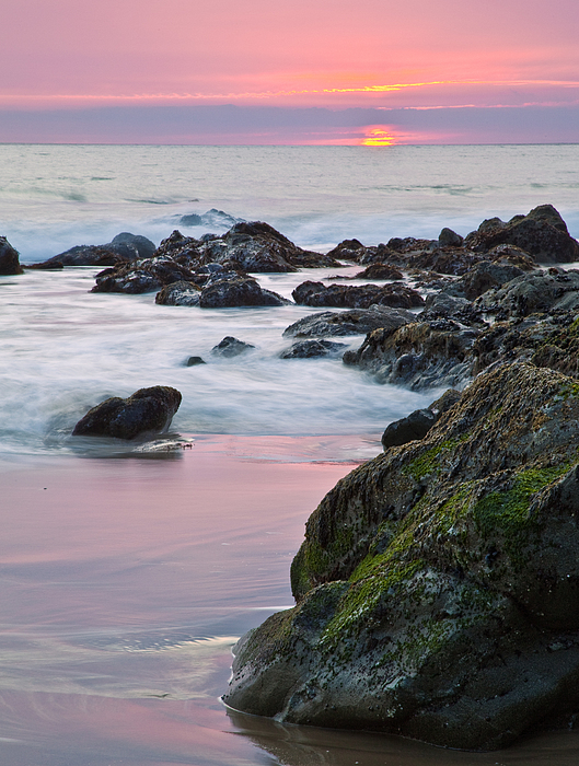 Beaches Photograph - Pink Sunset by Greg Clure