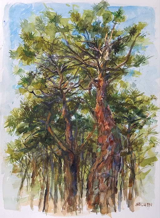 Cape Cod Painting - Pitch Pines, Cape Cod by Peter Salwen