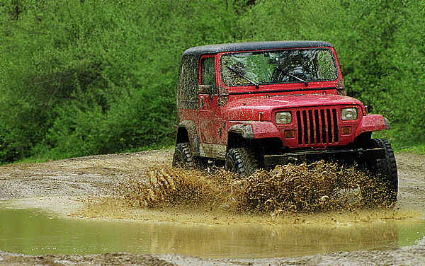 Michigan Photograph - Playing In The Mud by Scott Hovind