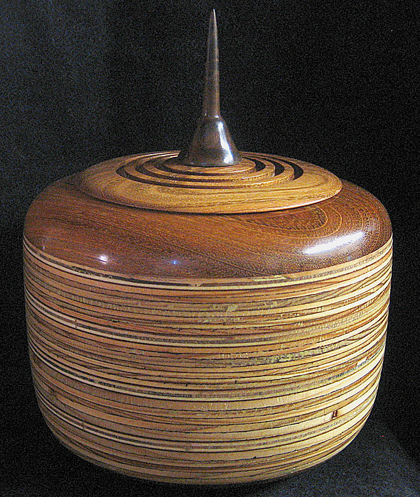 Turnings Sculpture - Plywood Jar by Chuck Turigliatto