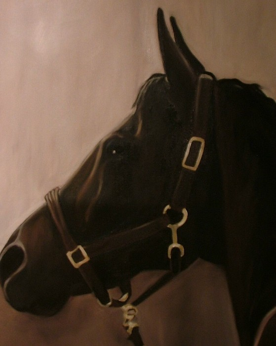 Horse Painting - Pocketchange by Donna Thomas