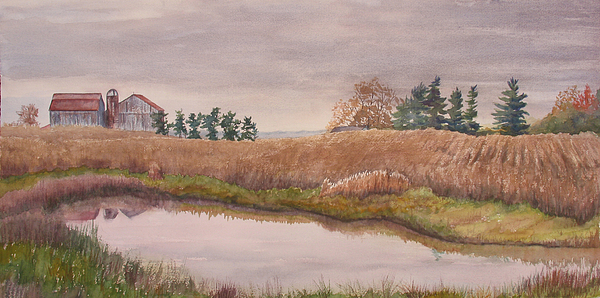 Farm Painting - Pond Magic by Debbie Homewood