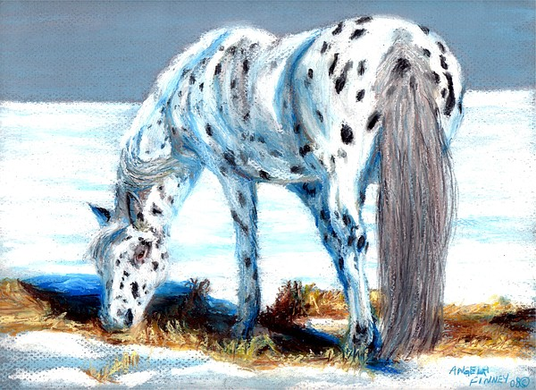 Pony Painting - Pony At Winter Pasture by Angela Finney