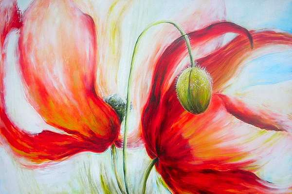 Bloemen Rood Klaproos Flowers Poppy Poppies Floral Red Light Painting - Poppies. by Jacqueline Klein Breteler