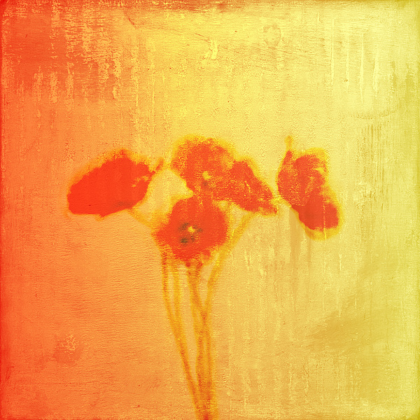 Poppies Painting - Poppies by Jude Reid