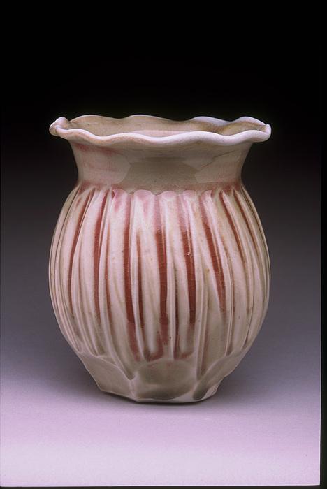 Wood Fired Ceramic Art - Porcelain Vase by Stephen Hawks