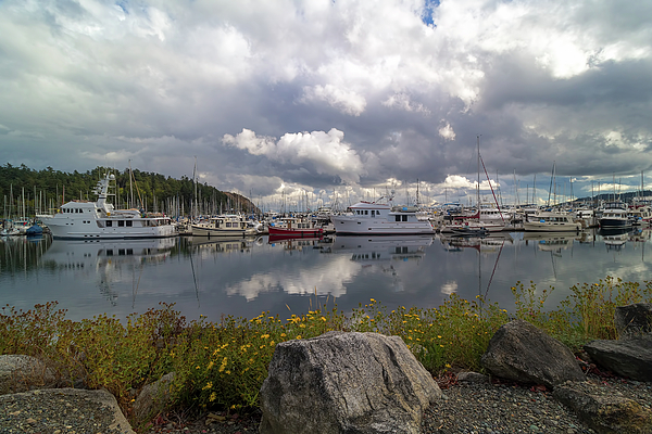 Port Photograph - Port Of Anacortes Marina On A Cloudy Day by David Gn