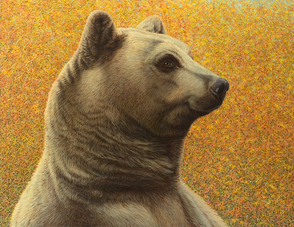 Bear Painting - Portrait Of A Bear by James W Johnson