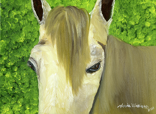 Horse Painting - Portrait Of A Curious Horse by Maria Williams
