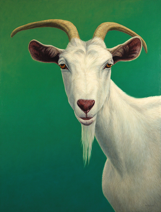 Portrait Of A Goat Painting By James W Johnson