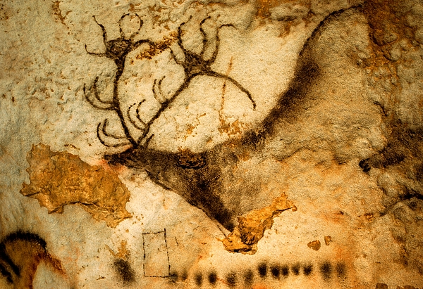 Red Deer Photograph - Prehistoric Artists Painted A Red Deer by Sisse Brimberg
