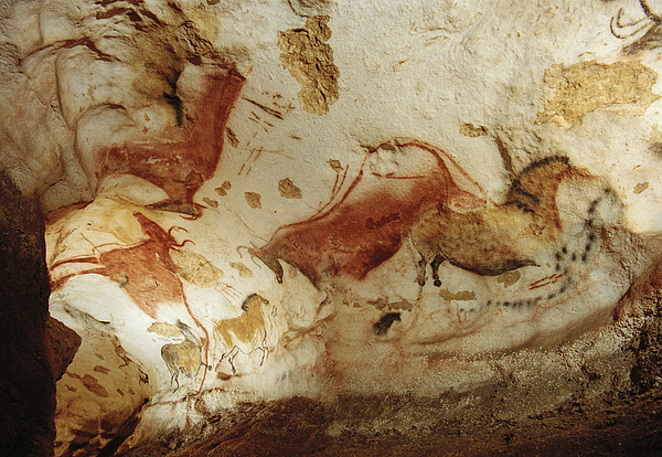 Indoor Photograph - Prehistoric Artists Painted Robust by Sisse Brimberg