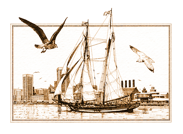 Ship Drawing - Pride Of Baltimore by John D Benson