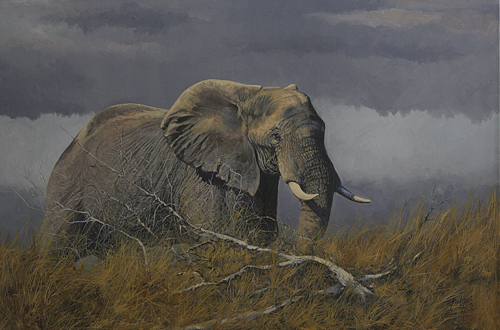 African Painting - Promise Of Rain by Paul Apps
