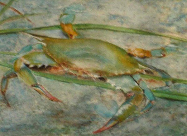 Crab Paintings Painting - Propa Blue Crab by Sibby S