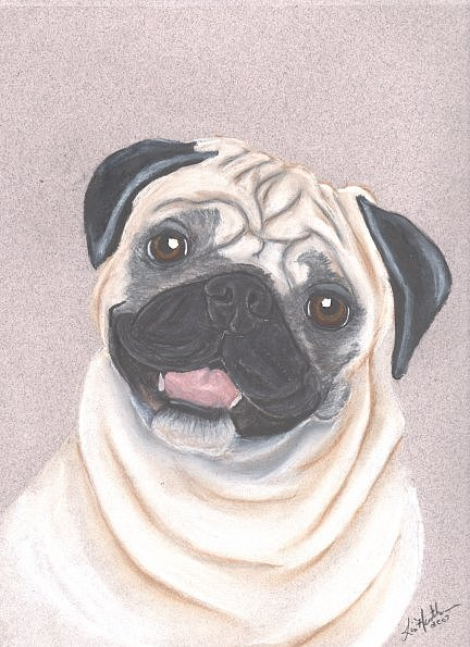 Dog Painting - Pug by Linda Henthorn