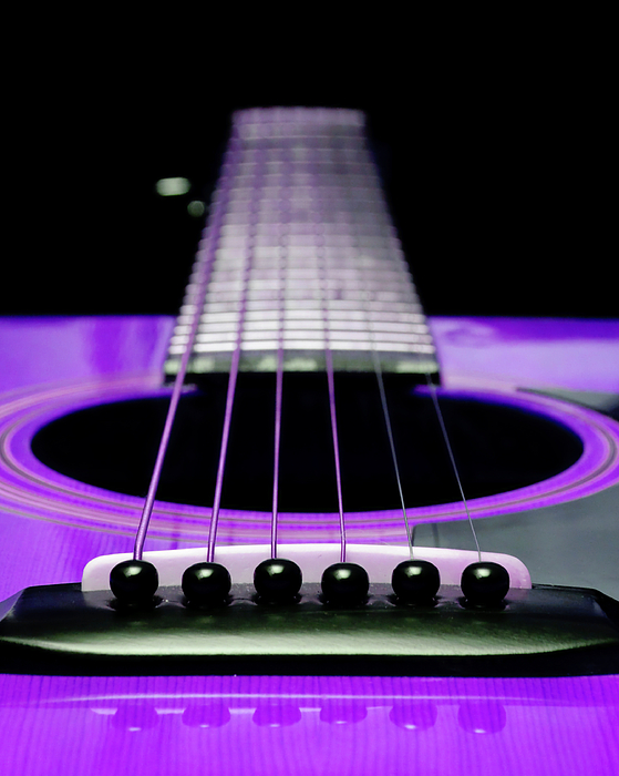 Purple Guitar 15 Photograph - Purple Guitar 15 by Andee Design