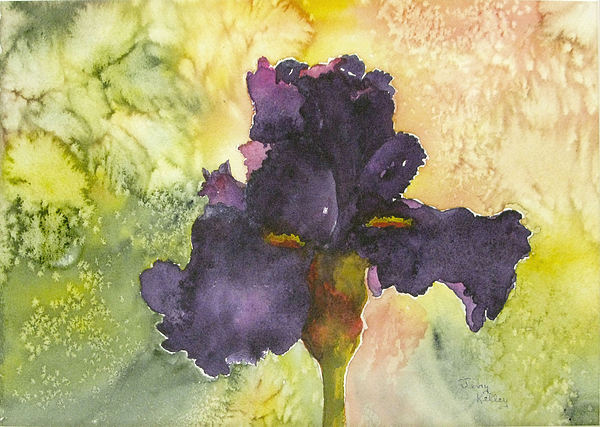 Iris Painting - Purple Iris by Jerry Kelley