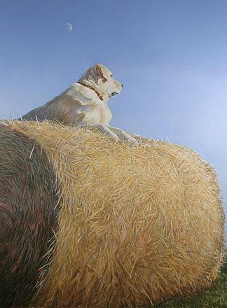 Dog Painting - Quarter Moon by Alan  Bateman