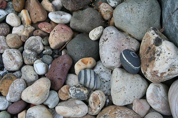 Queen Charlotte Island Stones Photograph - Queen Charlotte Island Stones by Sherry Leigh Williams