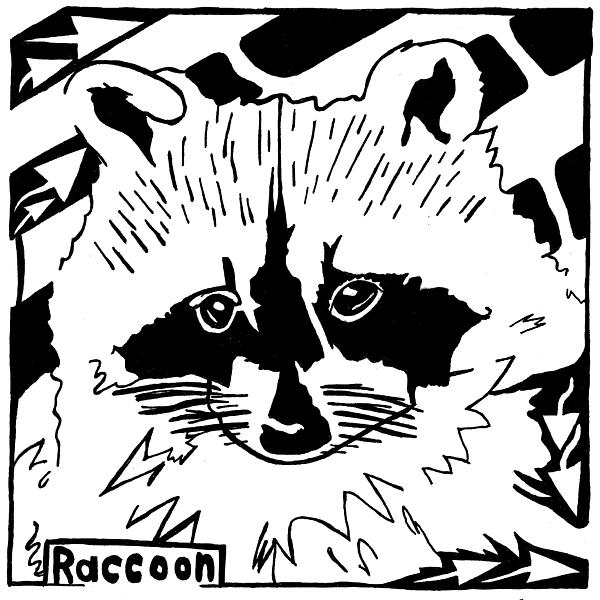 Raccoon Drawing - Raccoon Maze by Yonatan Frimer Maze Artist