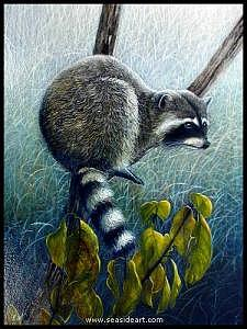 Racoon Painting - Racoon by NW Lalk