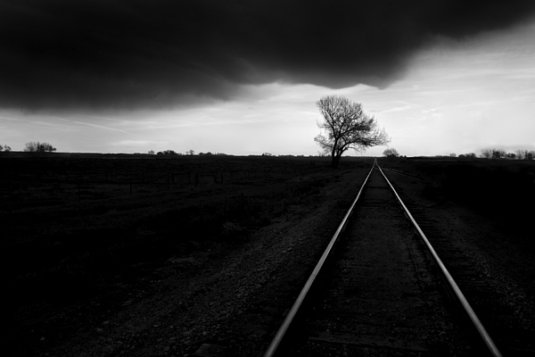 B&w Photograph - Railroad Tracks by Cole Thompson