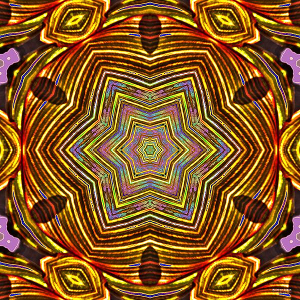 Rainbow Digital Art - Rainbow Canna by Brian Gryphon