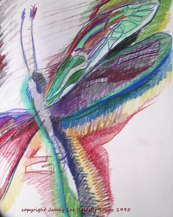 Flying Insects Drawing - Rainbow Dragonfly by Jamey Balester