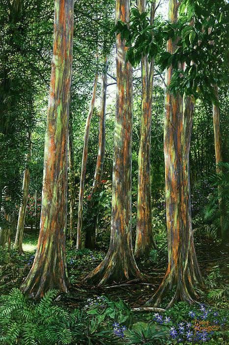 Doug Kreuger - Rainbow Forest
