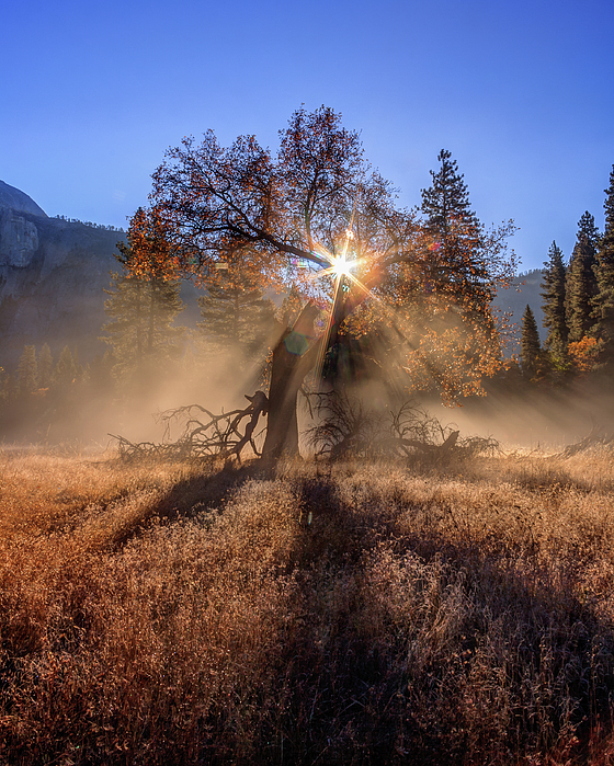 Yosemite Photograph - Rainbow In Yosemite Valley Ice Fog by Jeff Sullivan
