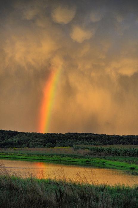 Rainbow Photograph - Rainbow Reflection by Emily Stauring