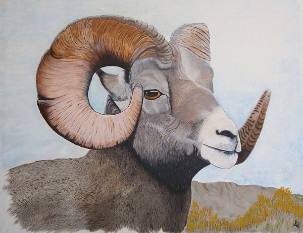 Wildlife Painting - Ram 3 by Al Borrego