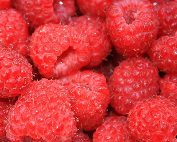 Food Photograph - Raspberries Close-up by Carol Groenen