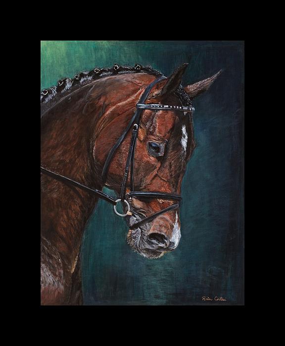 Dressage Horse Painting - Raymeister by Rita Cortesi