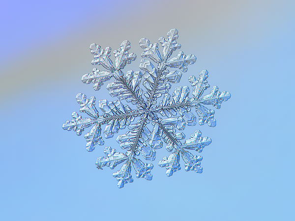 Snowflake Photograph - Real Snowflake - Hyperion by Alexey Kljatov