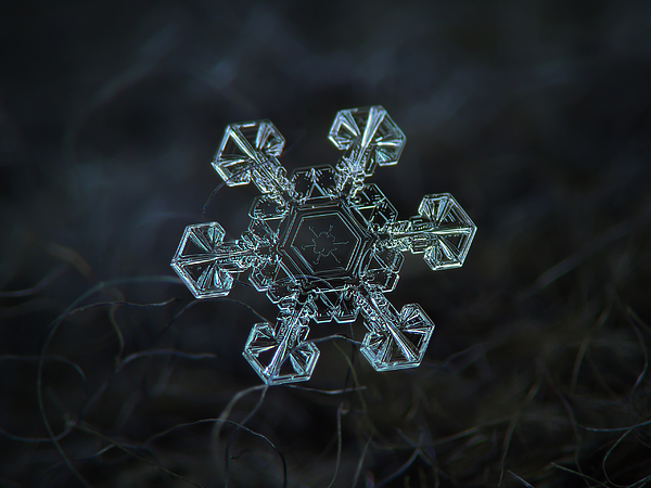 Snowflake Photograph - Real Snowflake - Ice Crown New by Alexey Kljatov