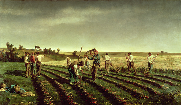 Reaping Painting - Reaping Sainfoin In Chambaudouin by Pierre Edmond Alexandre Hedouin