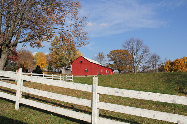 Red Photograph - Red Amish Barn by Donna Bosela