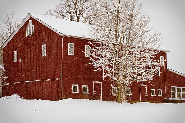 Red Barn Photograph - Red Barn IIi by Tim Fitzwater